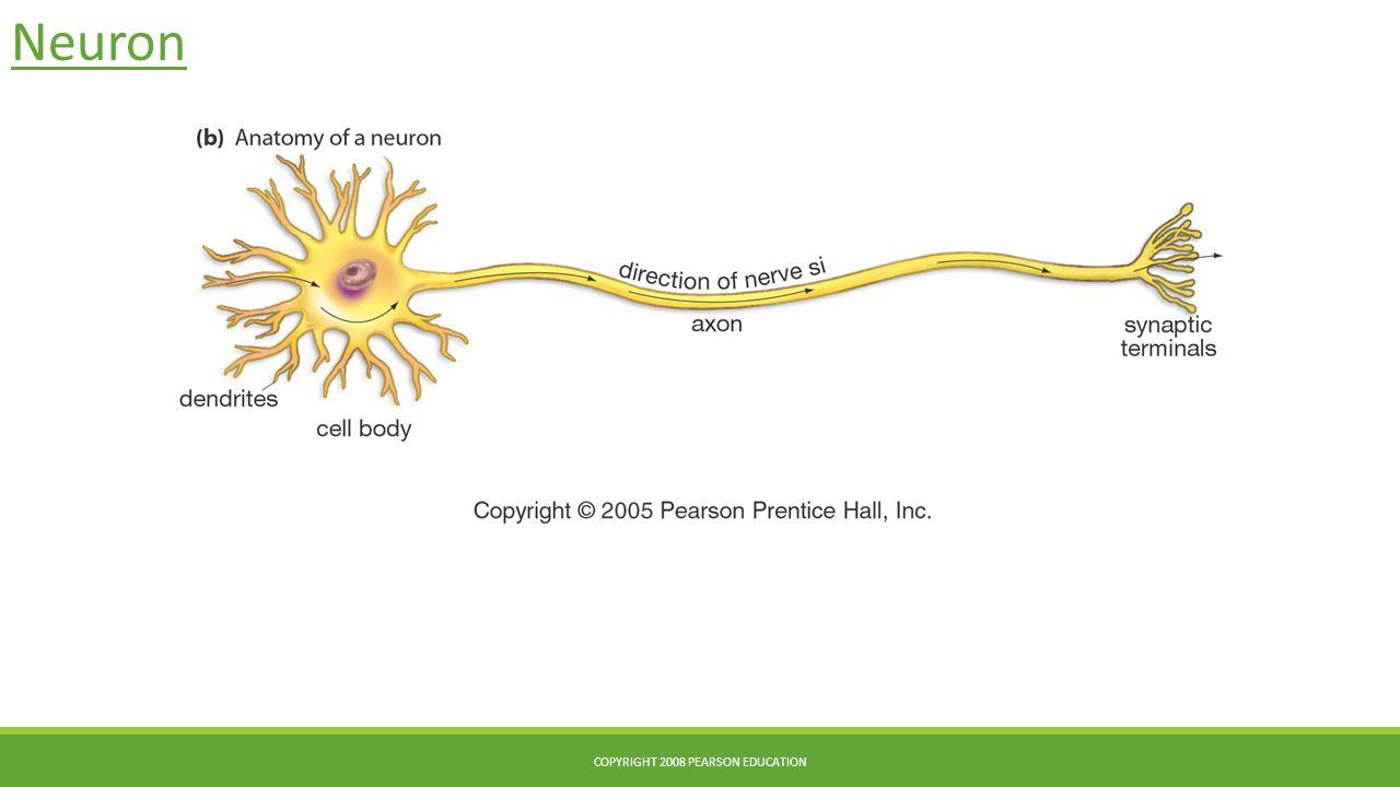 Copyright 2008 Pearson Education