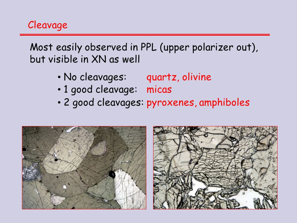 Cleavage Most easily observed in PPL (upper polarizer out), but visible in XN as well. No cleavages: quartz, olivine.