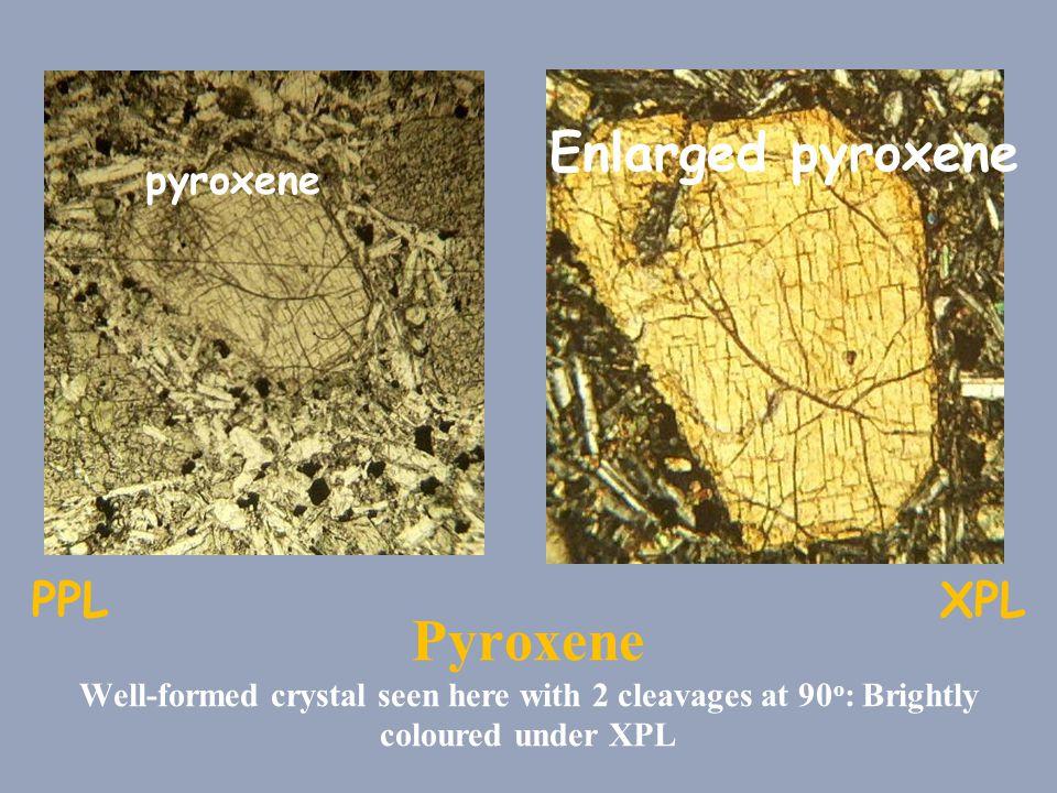 Enlarged pyroxene pyroxene. PPL. XPL.