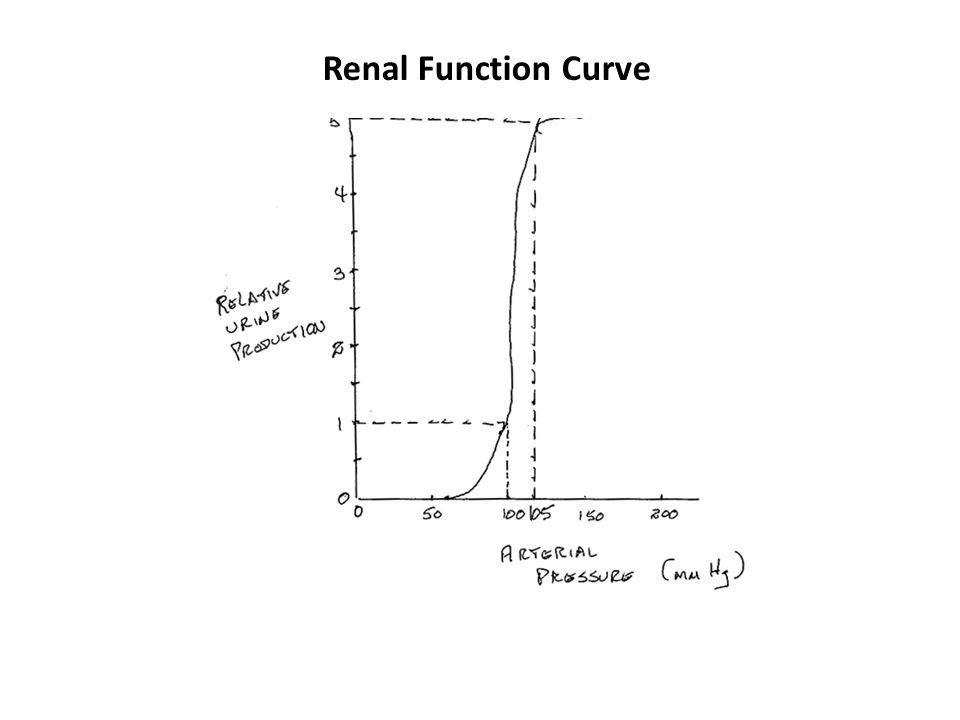 Renal Function Curve