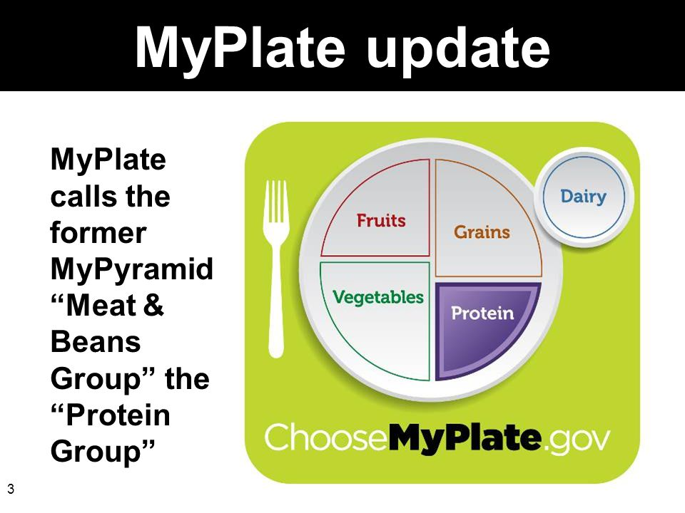 MyPlate update MyPlate calls the former MyPyramid Meat & Beans Group the Protein Group