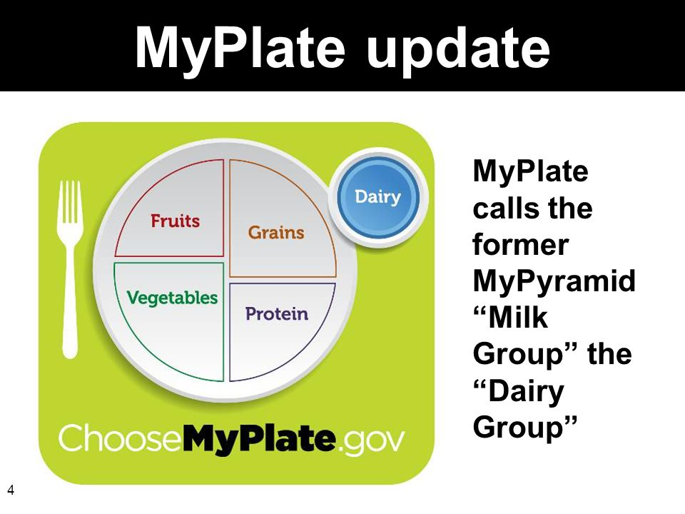 MyPlate update MyPlate calls the former MyPyramid Milk Group the Dairy Group