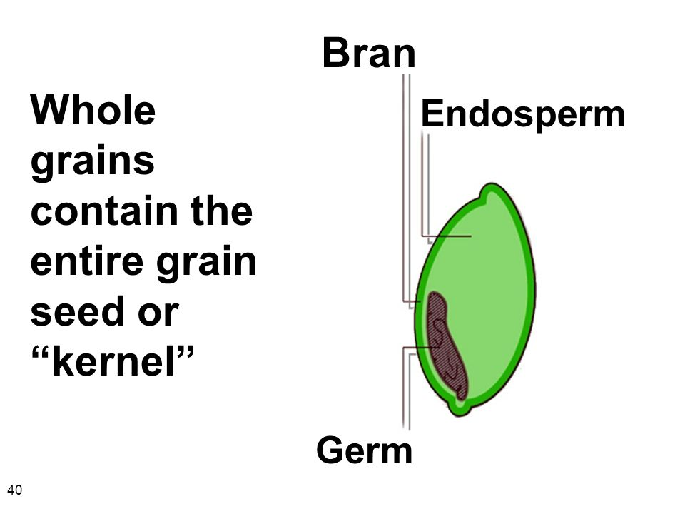 Whole grains contain the entire grain seed or kernel