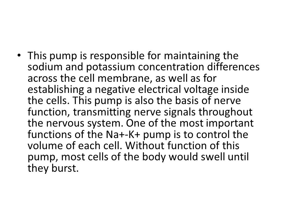This pump is responsible for maintaining the sodium and potassium concentration differences across the cell membrane, as well as for establishing a negative electrical voltage inside the cells.