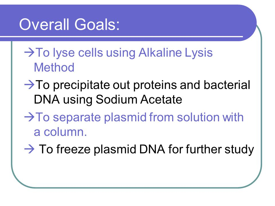 Overall Goals: To lyse cells using Alkaline Lysis Method