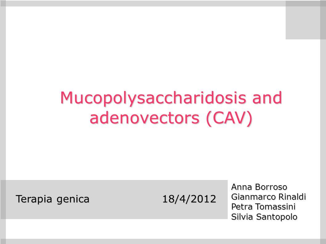 Mucopolysaccharidosis and adenovectors (CAV)