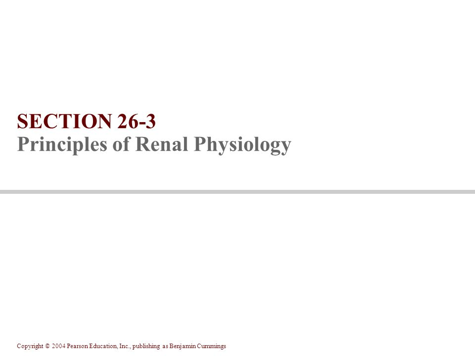 SECTION 26-3 Principles of Renal Physiology