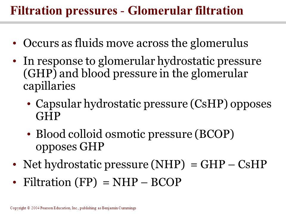 Filtration pressures - Glomerular filtration