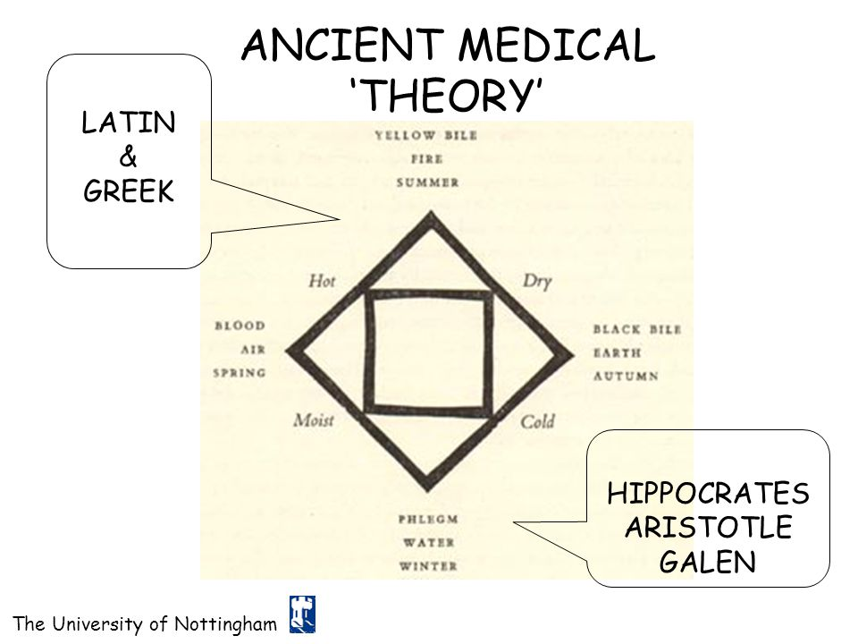ANCIENT MEDICAL 'THEORY'