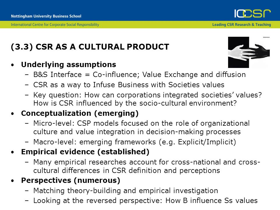 (3.3) CSR AS A CULTURAL PRODUCT