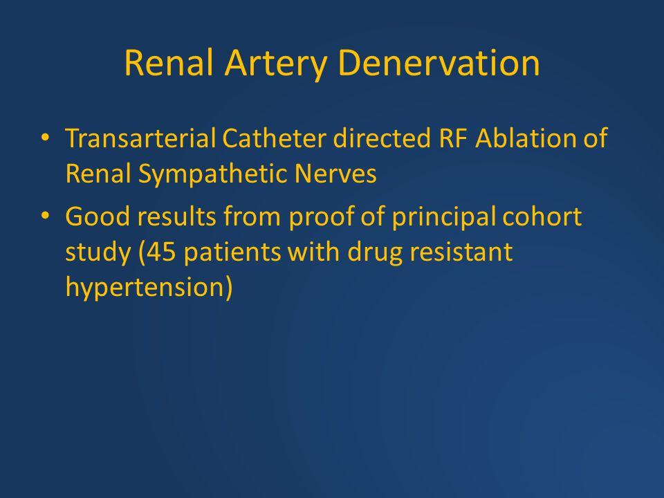 Renal Artery Denervation