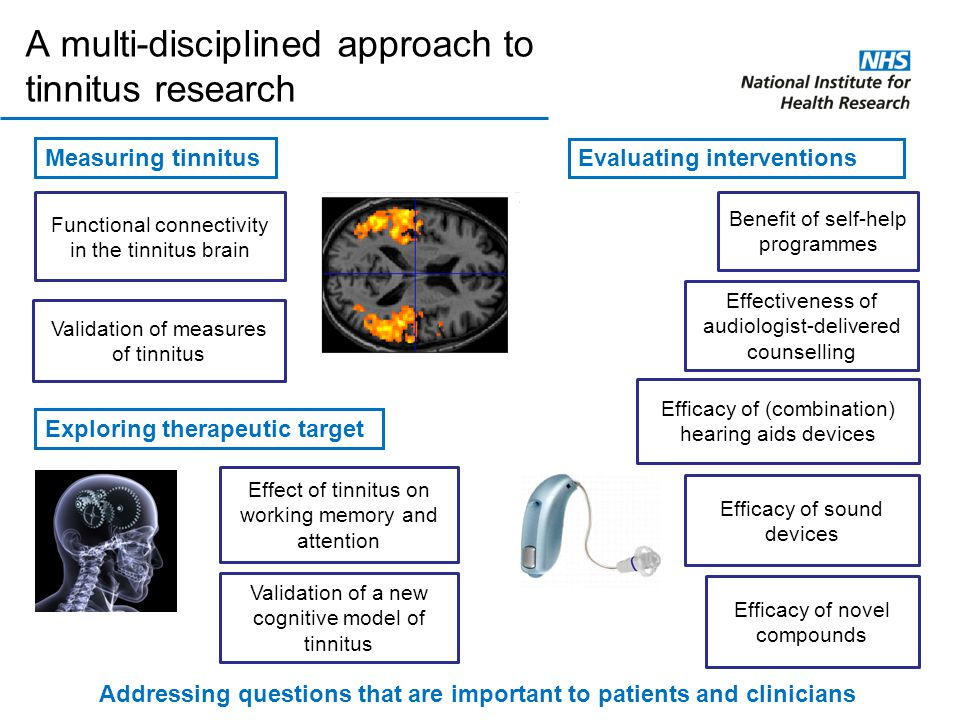 A multi-disciplined approach to tinnitus research