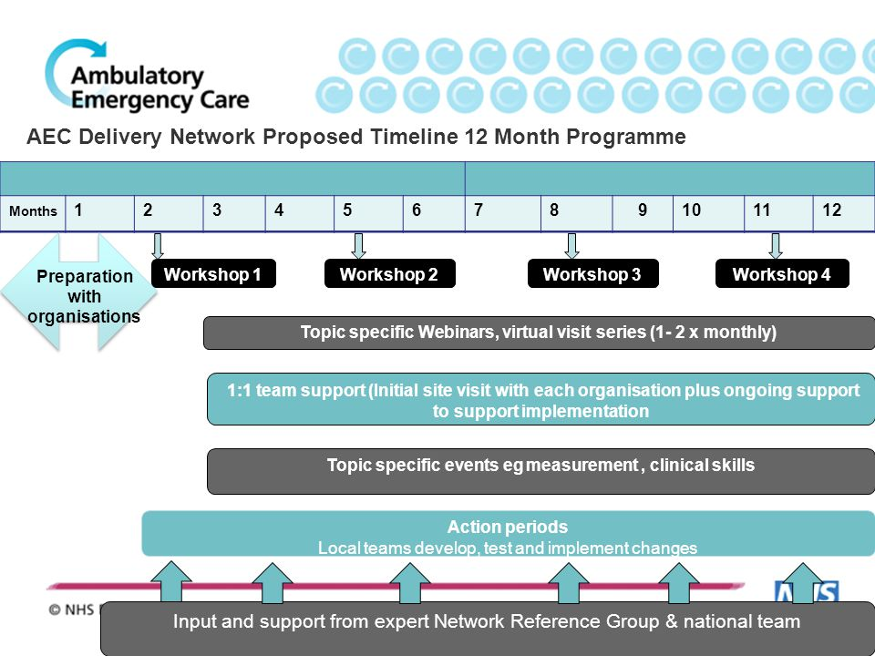 AEC Delivery Network Proposed Timeline 12 Month Programme