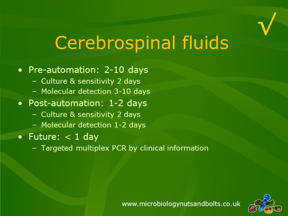 √ Cerebrospinal fluids Pre-automation: 2-10 days