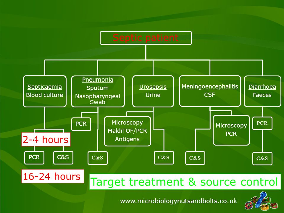 Target treatment & source control