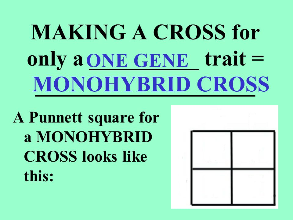 MAKING A CROSS for only a __________ trait = ____________________