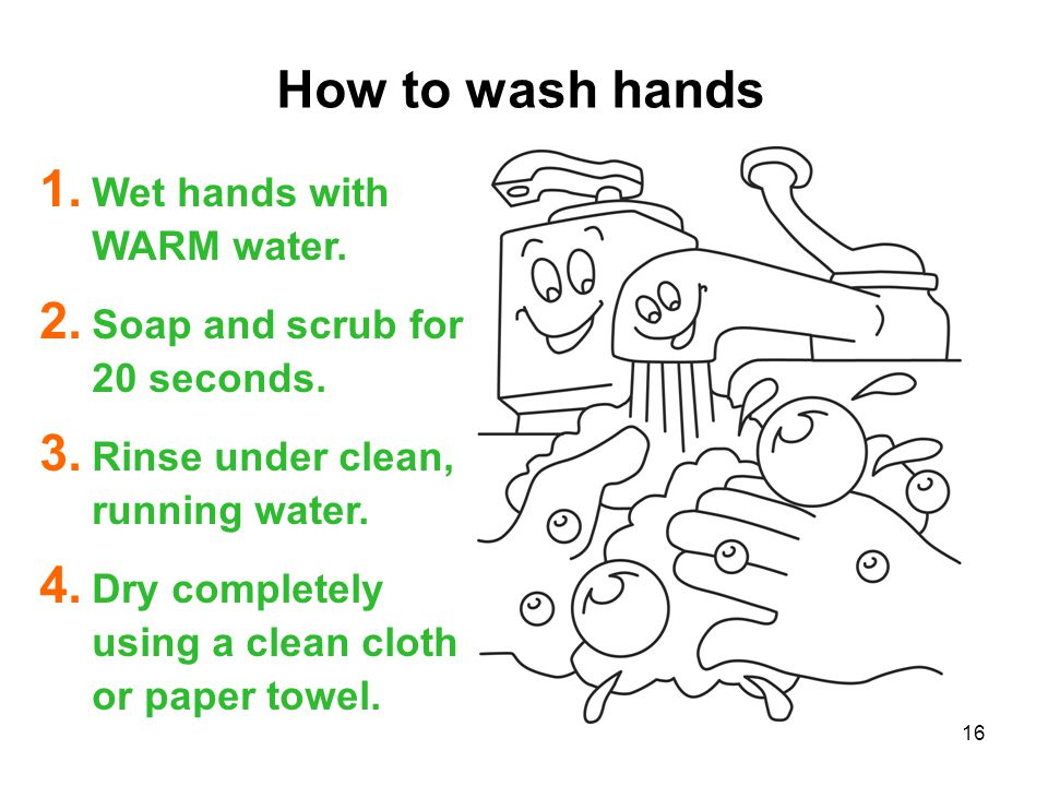 How to wash hands Wet hands with WARM water.