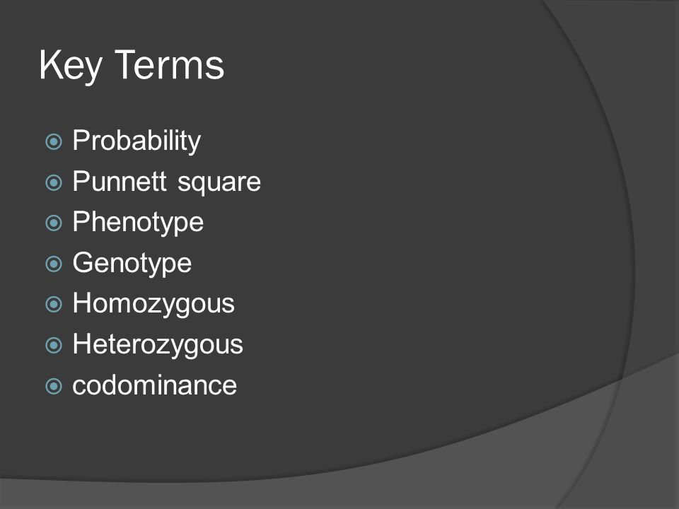 Key Terms Probability Punnett square Phenotype Genotype Homozygous