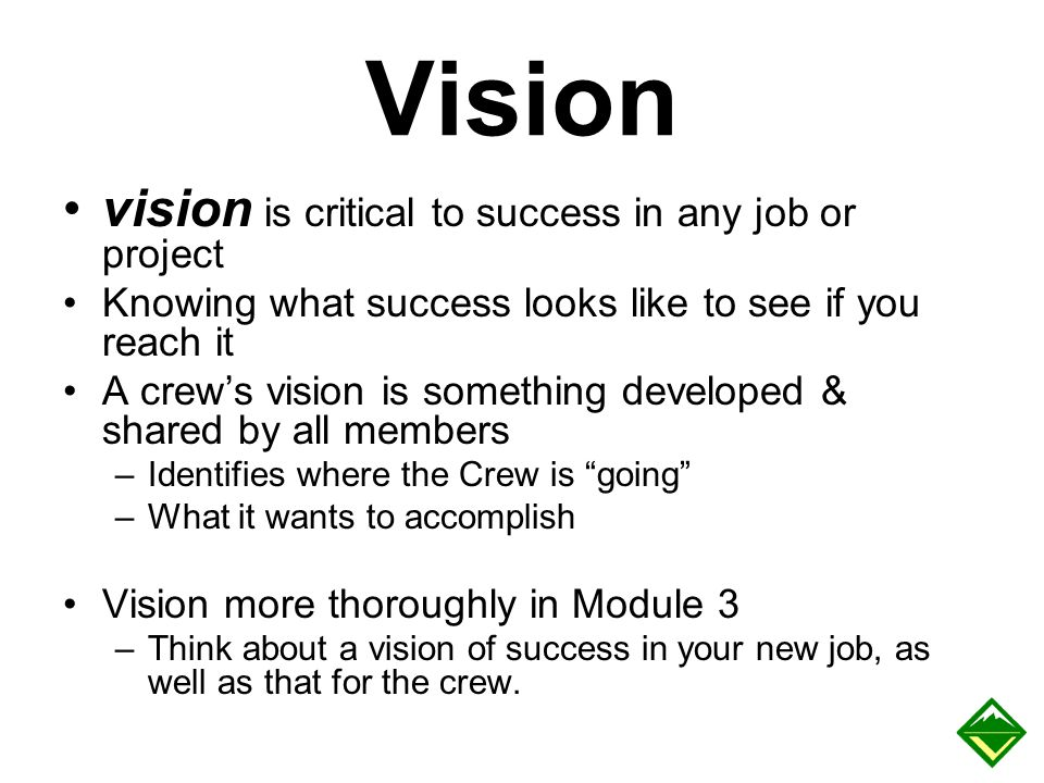 Vision vision is critical to success in any job or project