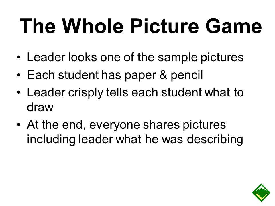 The Whole Picture Game Leader looks one of the sample pictures