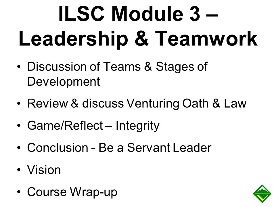ILSC Module 3 – Leadership & Teamwork