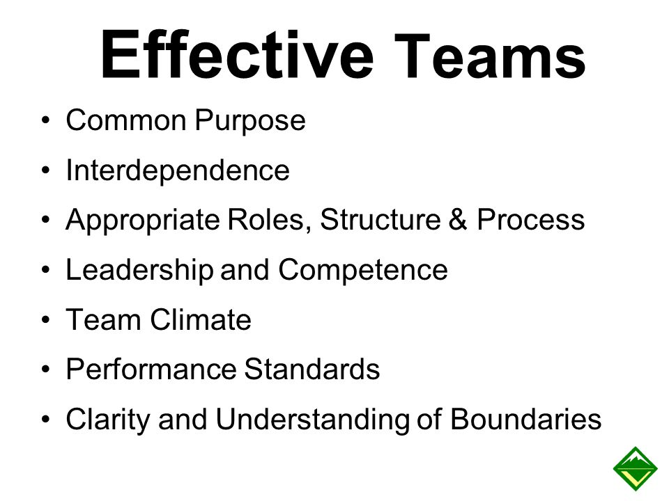 Effective Teams Common Purpose Interdependence