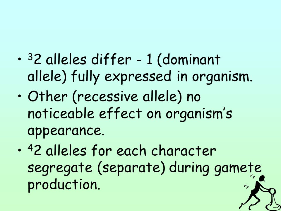 32 alleles differ - 1 (dominant allele) fully expressed in organism.