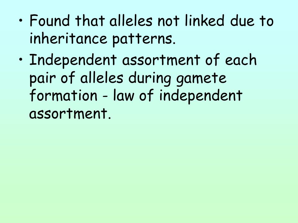 Found that alleles not linked due to inheritance patterns.