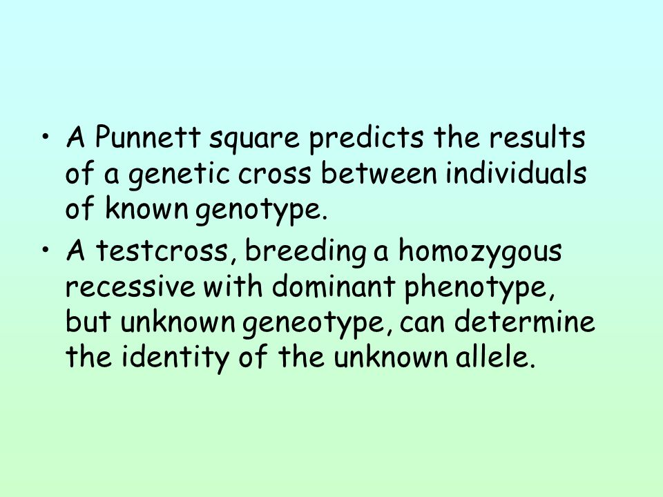 A Punnett square predicts the results of a genetic cross between individuals of known genotype.
