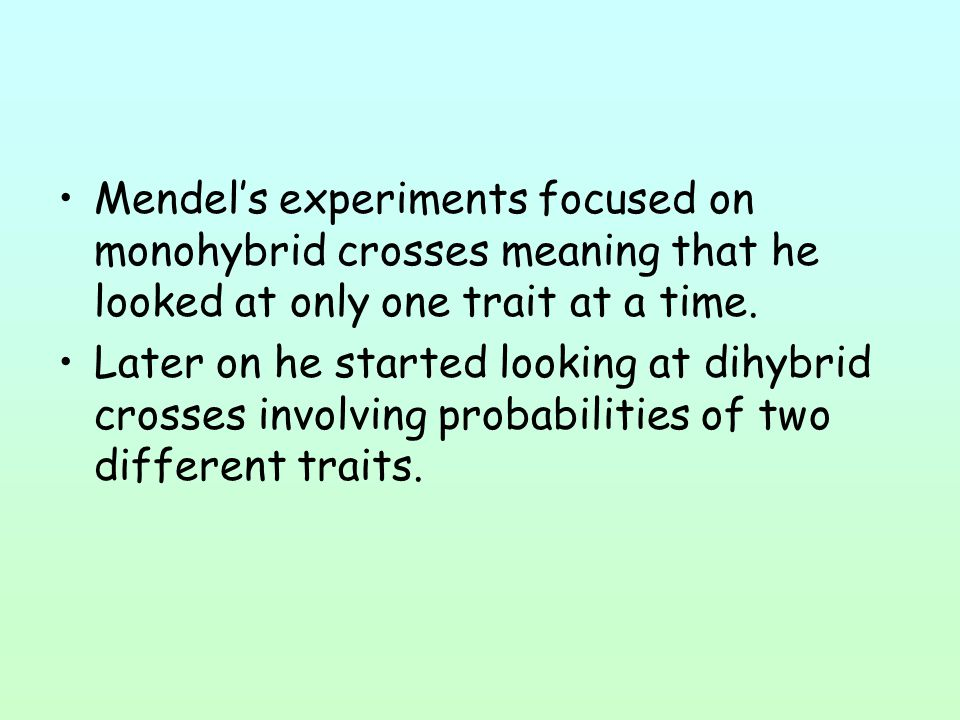 Mendel's experiments focused on monohybrid crosses meaning that he looked at only one trait at a time.