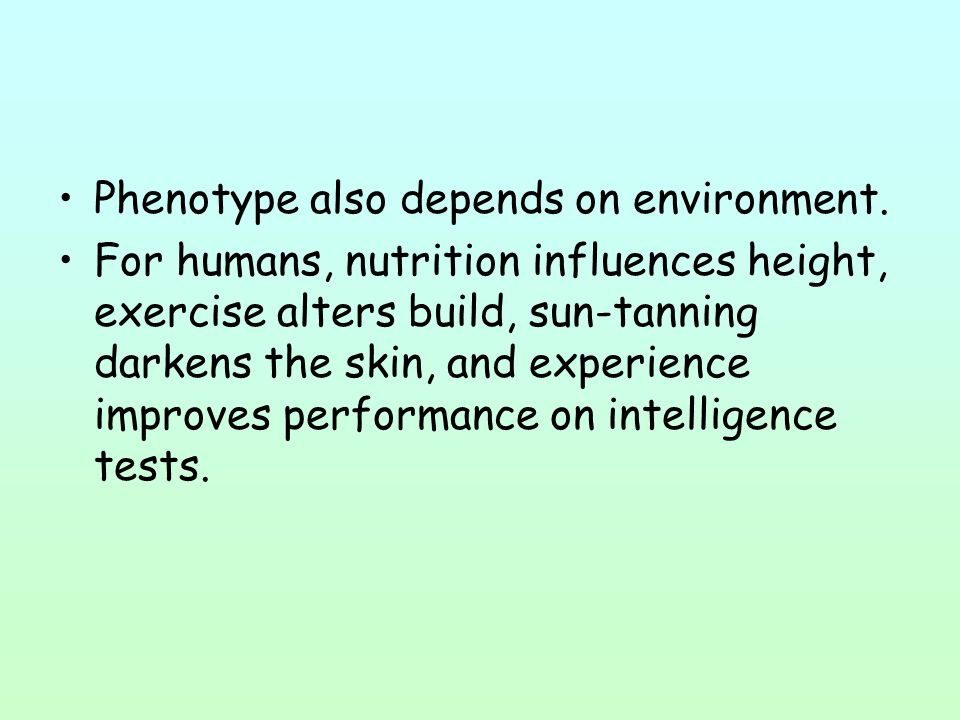 Phenotype also depends on environment.