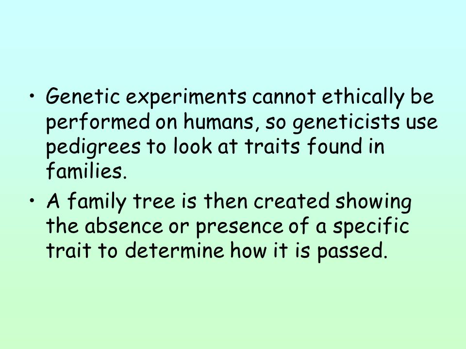 Genetic experiments cannot ethically be performed on humans, so geneticists use pedigrees to look at traits found in families.