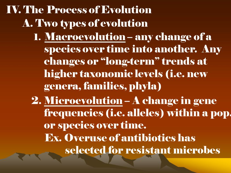 IV. The Process of Evolution A. Two types of evolution