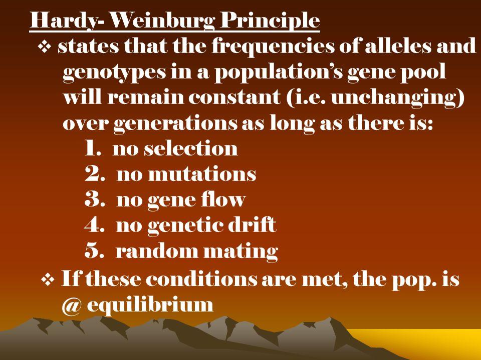 Hardy- Weinburg Principle
