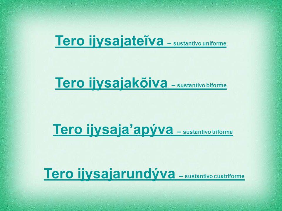 Tero ijysajateĩva – sustantivo uniforme