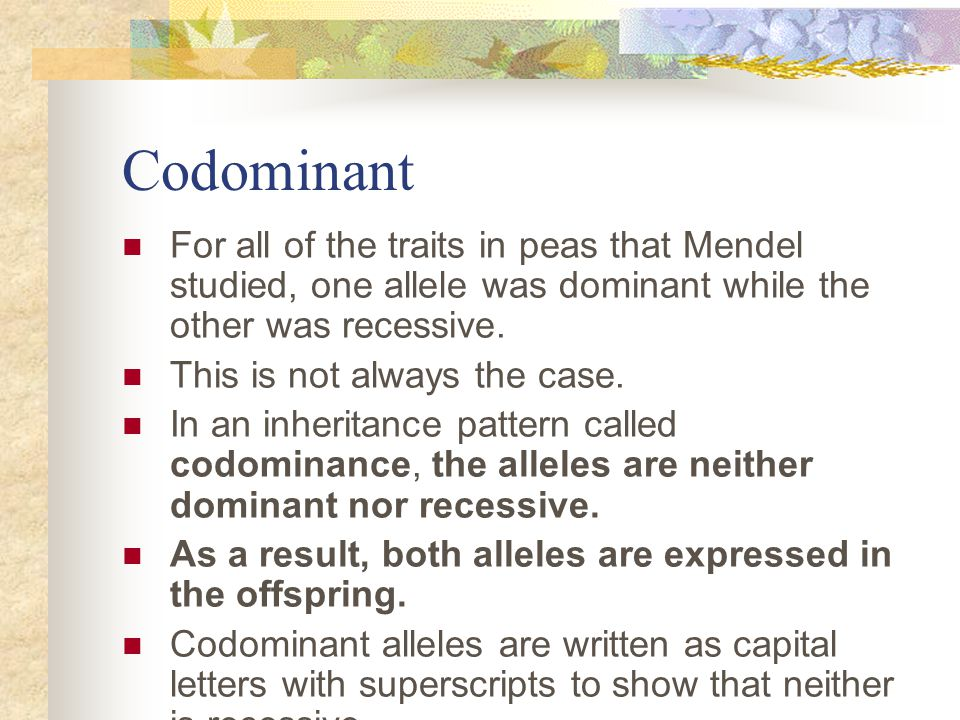 Codominant For all of the traits in peas that Mendel studied, one allele was dominant while the other was recessive.
