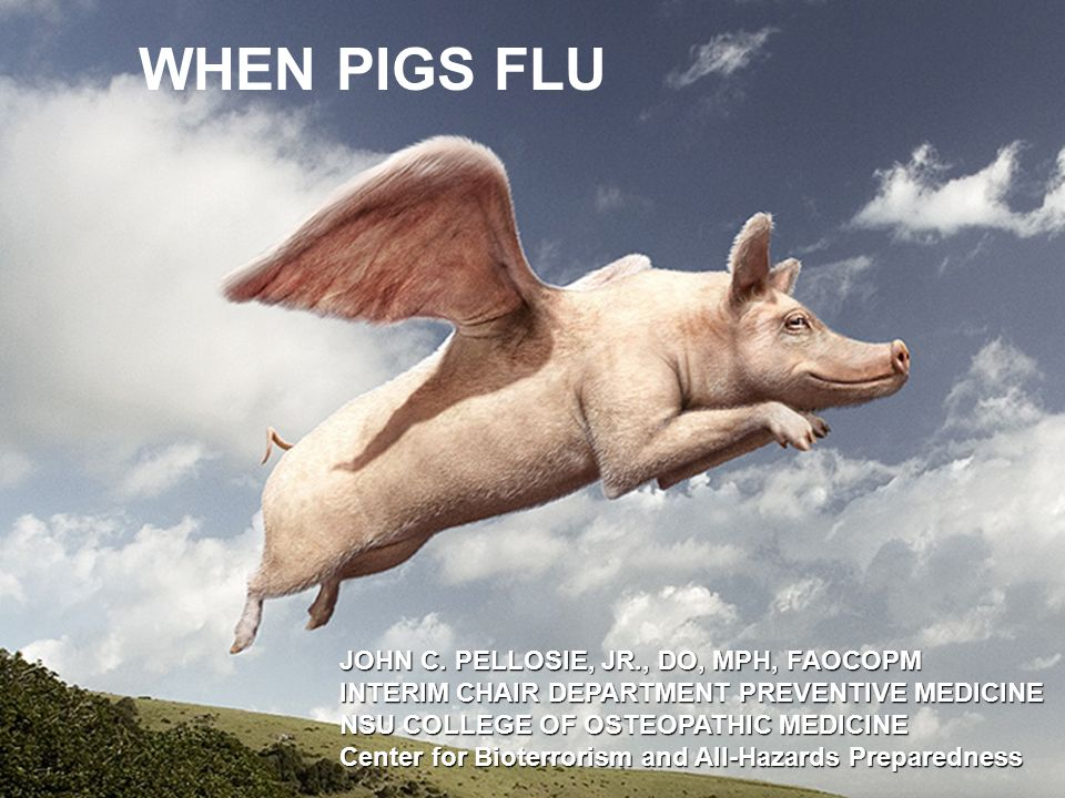 WHEN PIGS FLU JOHN C. PELLOSIE, JR., DO, MPH, FAOCOPM