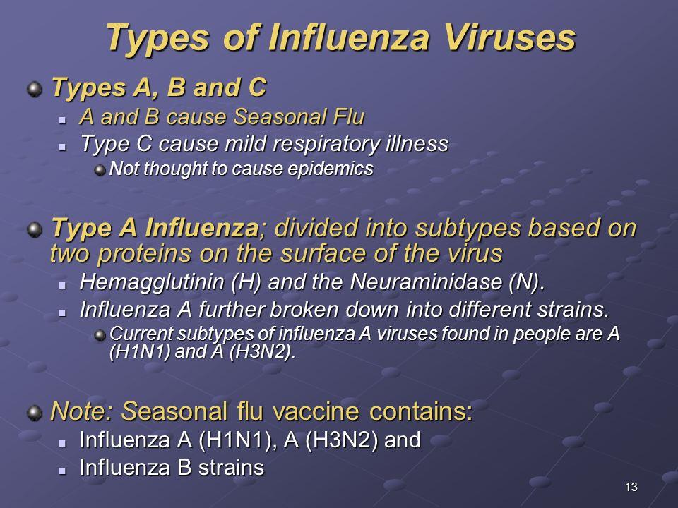 Types of Influenza Viruses
