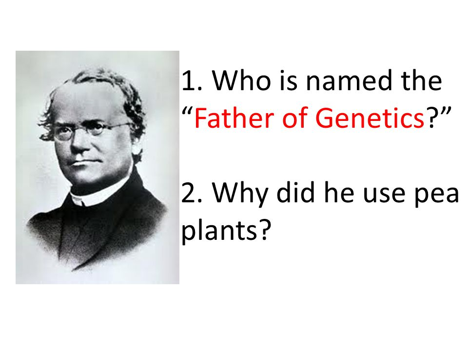 1. Who is named the Father of Genetics