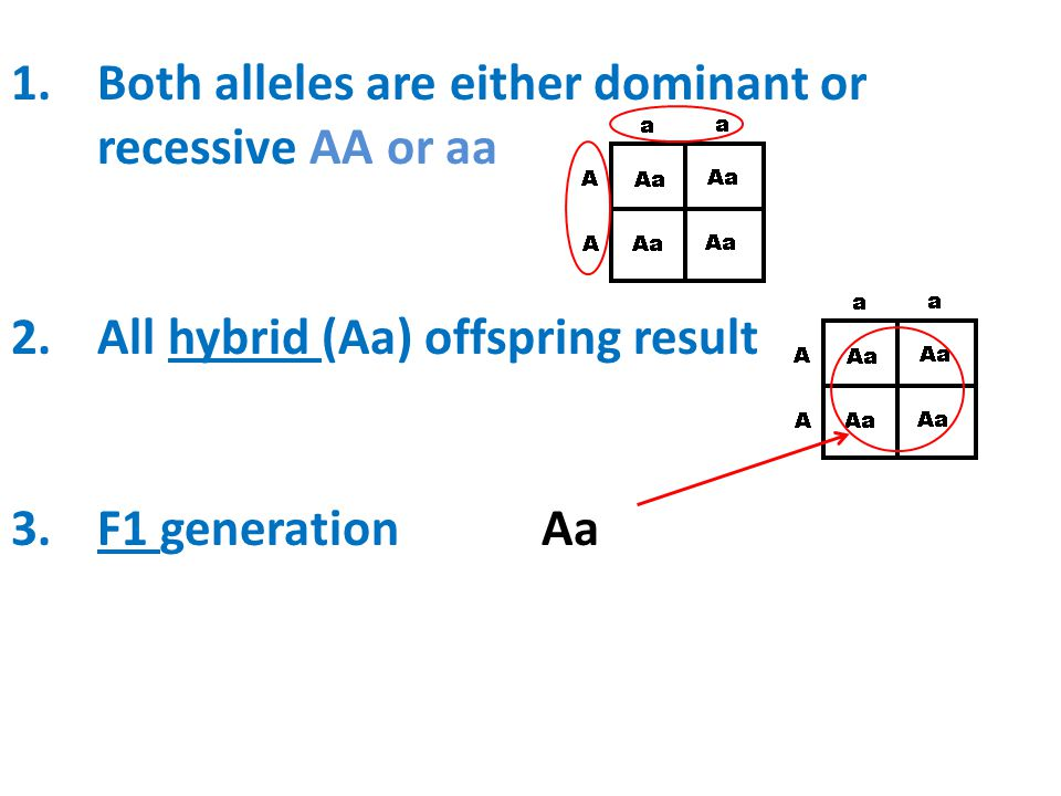 Both alleles are either dominant or recessive AA or aa