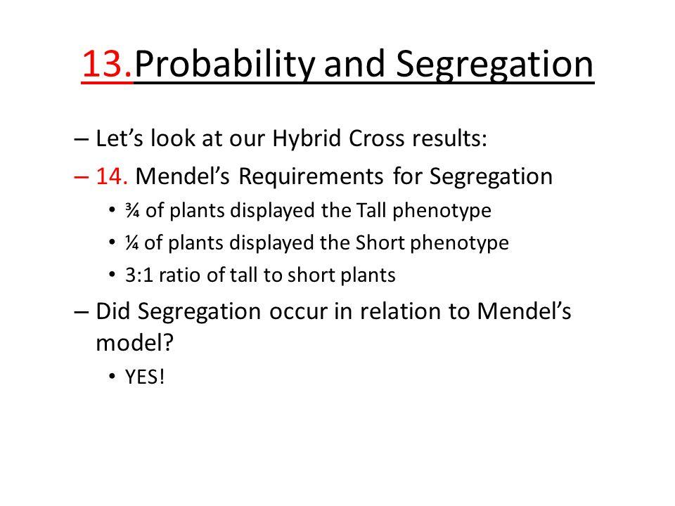 13.Probability and Segregation