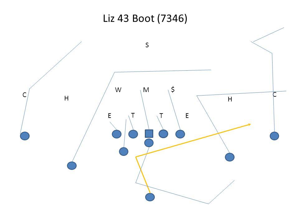 Liz 43 Boot (7346) S W M $ C C H H E T T E