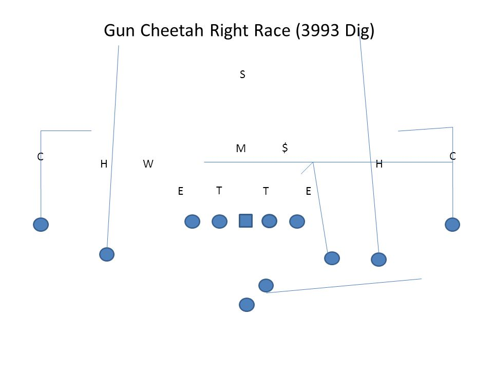 Gun Cheetah Right Race (3993 Dig)