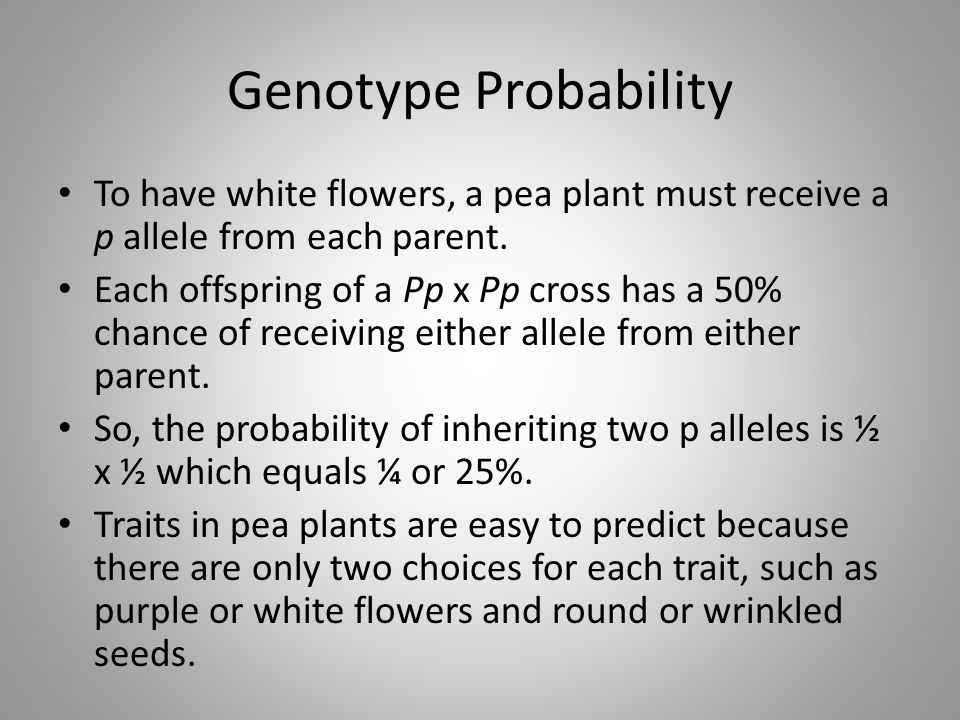 Genotype Probability To have white flowers, a pea plant must receive a p allele from each parent.