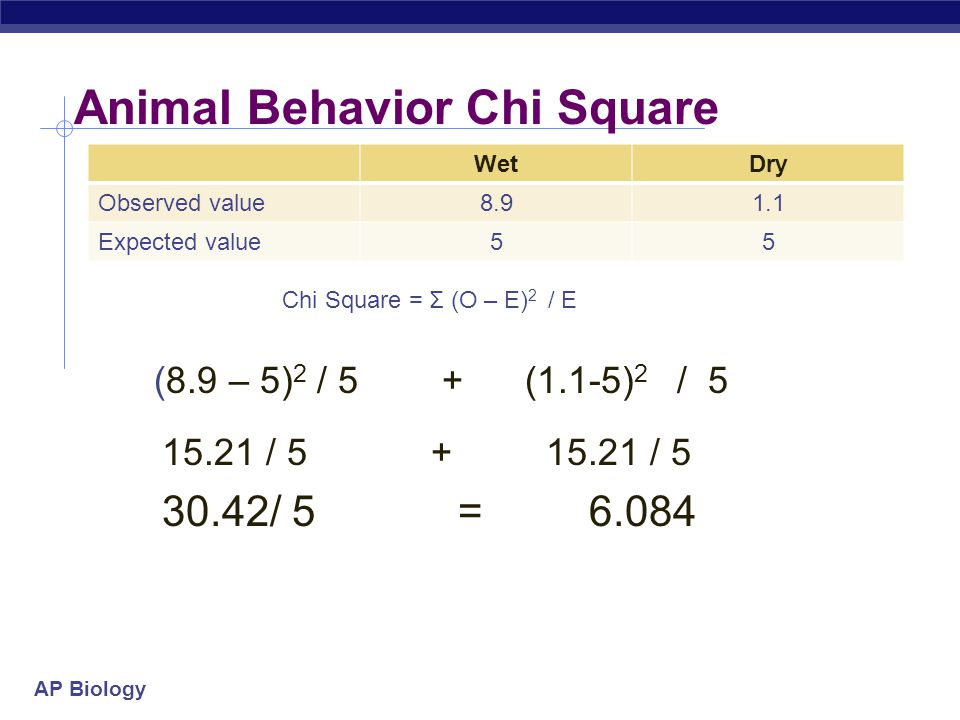 Animal Behavior Chi Square