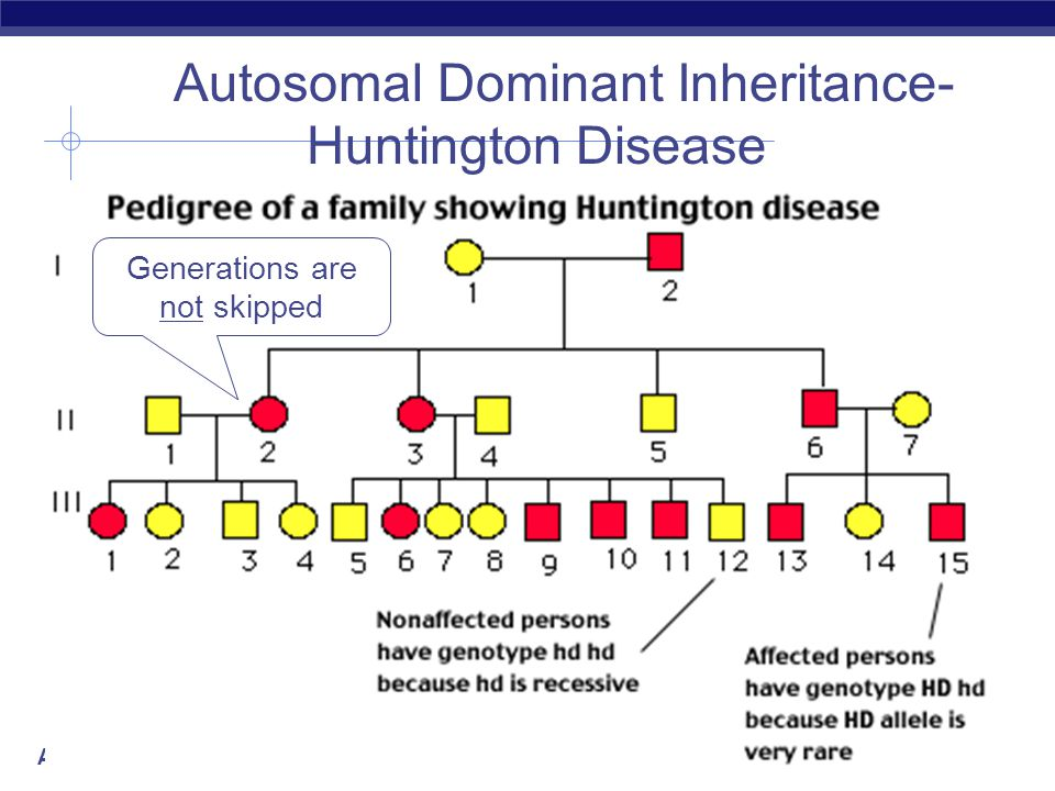 Autosomal Dominant Inheritance-Huntington Disease