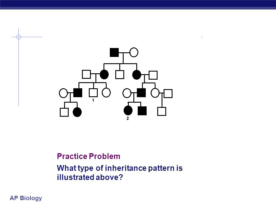 Practice Problem What type of inheritance pattern is illustrated above