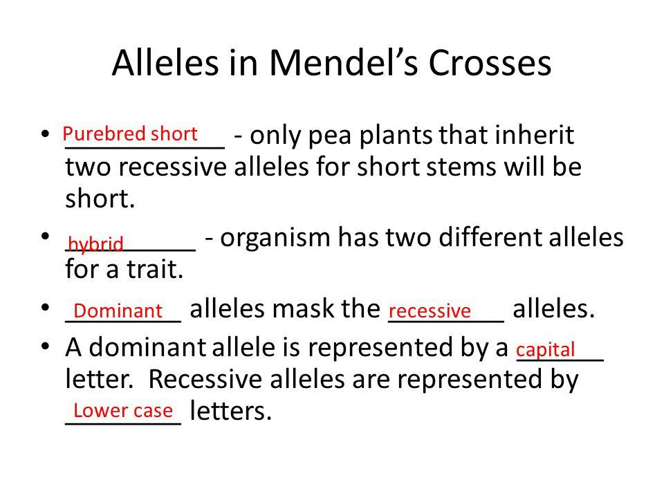 Alleles in Mendel's Crosses