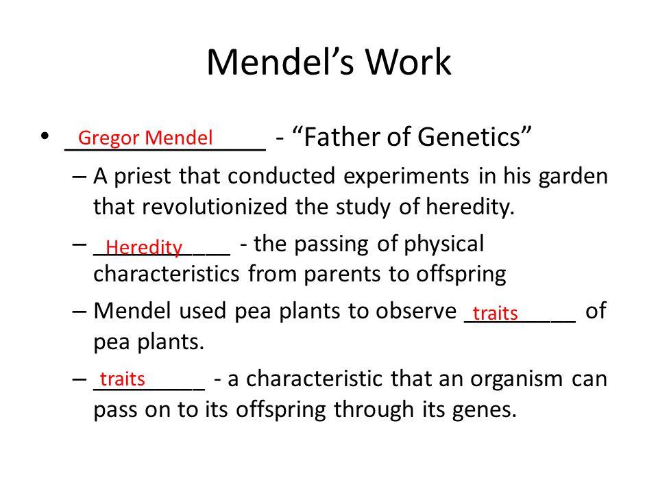 Mendel's Work ______________ - Father of Genetics