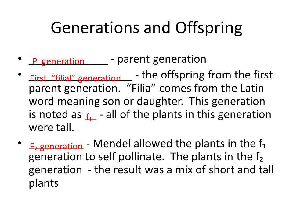 Generations and Offspring